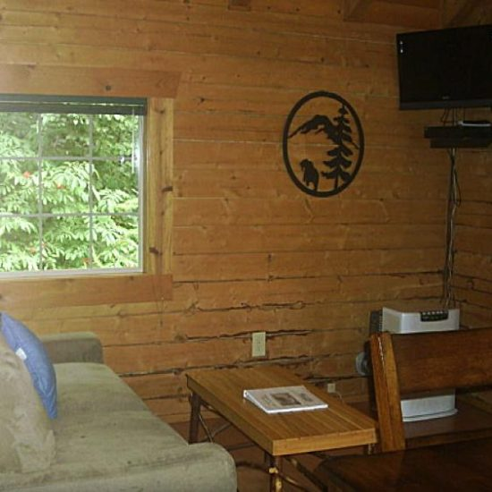 Bears Den living room at Box Canyon Cabins, Seward, AK.