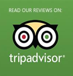 Box Canyon Cabins reviews on Trip Advisor.